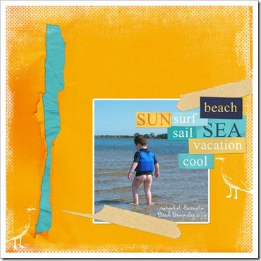 shelleyrae_beachBum