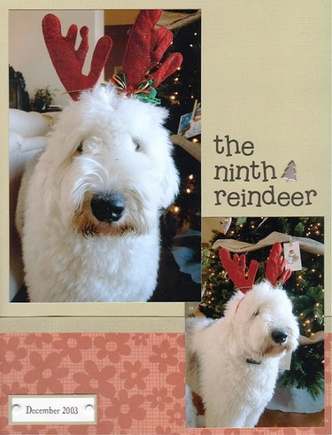 The_ninth_reindeer